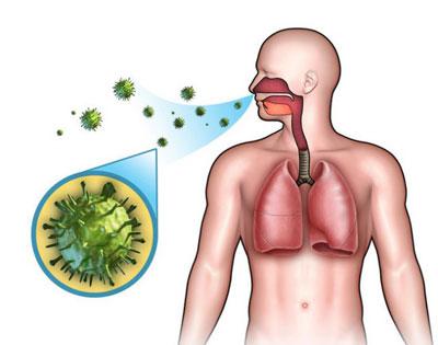 Инфекция стрептококк в дыхательных путях