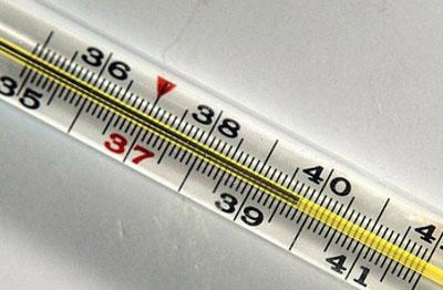 Температура 40 градусов